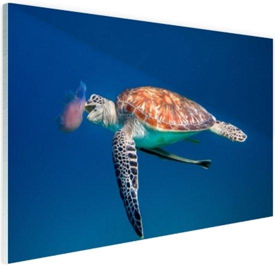 FotoCadeau.nl - Zeeschildpad blauw water met kwal Glas 60x40 cm - Foto print op Glas (Plexiglas wanddecoratie)