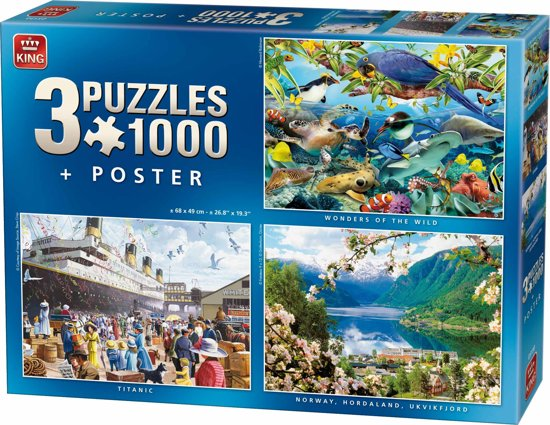 Puzzel 3 in 1 1000 stukjes