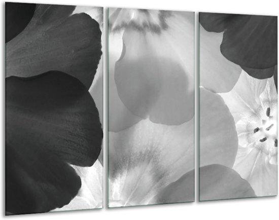 Glas schilderij Bloem | Zwart, Grijs | 120x80cm 3Luik | Foto print op Glas |  F006324