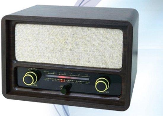 Roadstar HRA-1410 radio Draagbaar Analoog Zwart