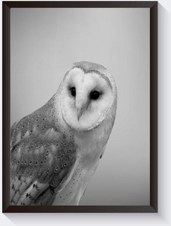 Beroemd bol.com | Zwart wit foto poster uil - Mooie uilenposter foto &OG98