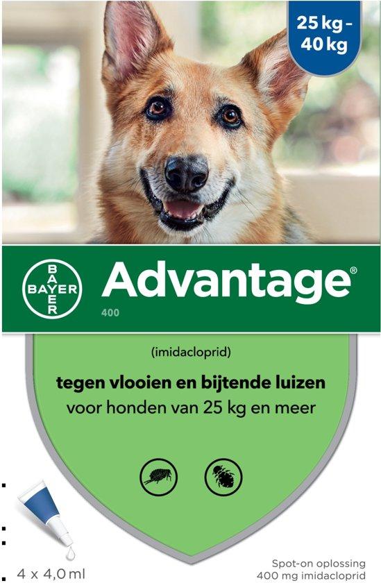 Bayer Advantage 400 - Hond 25+ kg - 4 Pipetten