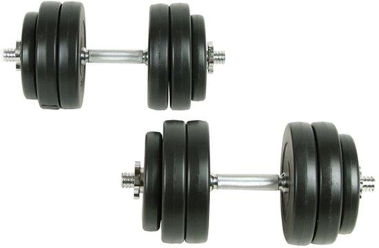 vidaXL - Halterset - Totaal 30 kg - 2 stuks