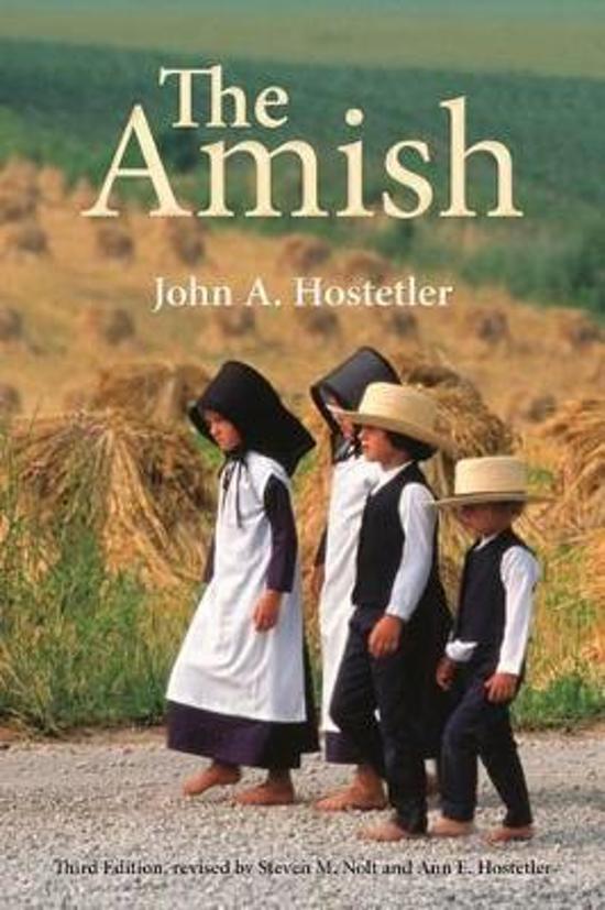 amish and john book