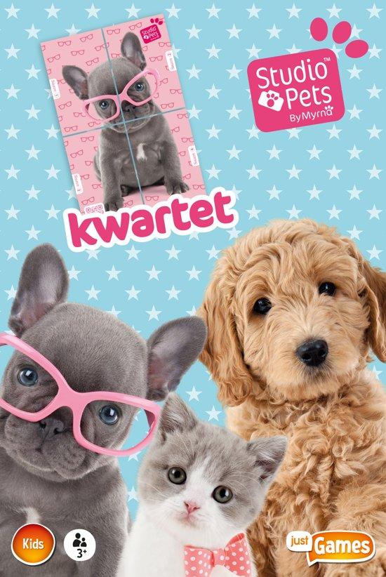 Thumbnail van een extra afbeelding van het spel Studio Pets - Kwartet