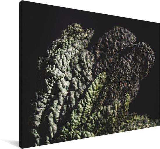 Palmkool tegen een zwarte achtergrond Canvas 30x20 cm - klein - Foto print op Canvas schilderij (Wanddecoratie woonkamer / slaapkamer)