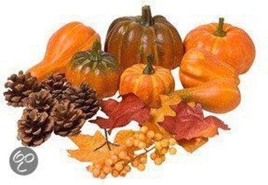 Halloween Decoratie Bestellen.Bol Com Herfst En Halloween Versiering Set Fun Feest