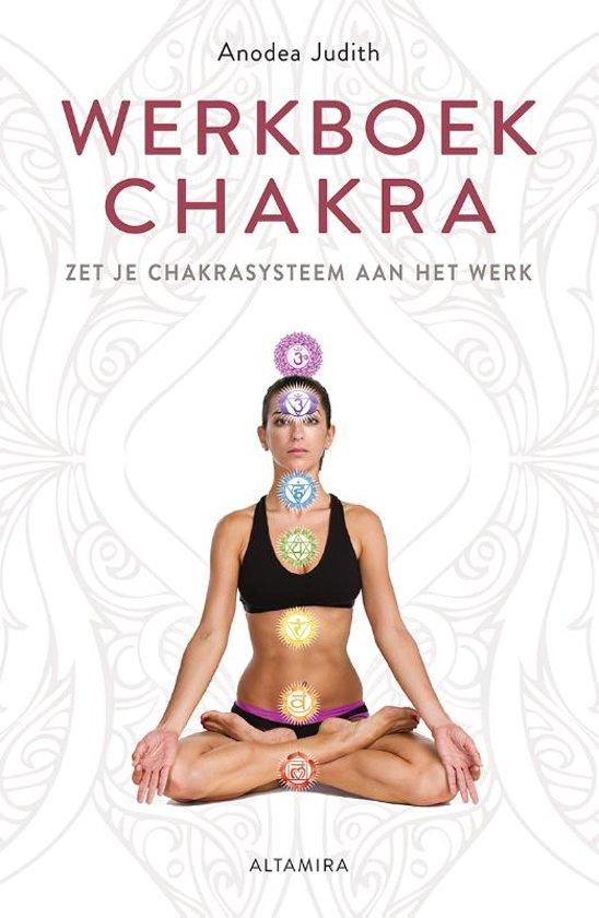 Werkboek chakra