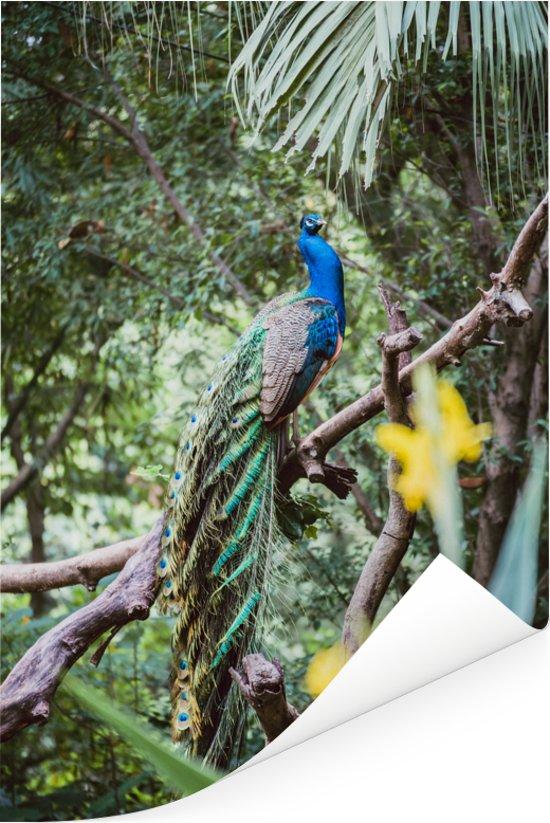 Blauwe pauw op een takje tussen de bladeren Poster 120x180 cm - Foto print op Poster (wanddecoratie woonkamer / slaapkamer) XXL / Groot formaat!