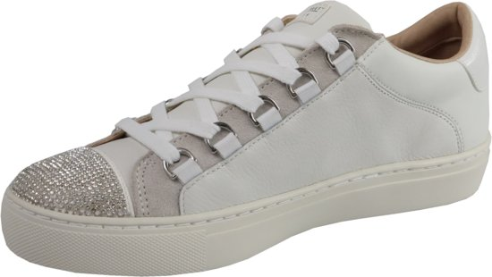 Lage Sneakers Skechers Bobs Squad 31362 LTPK