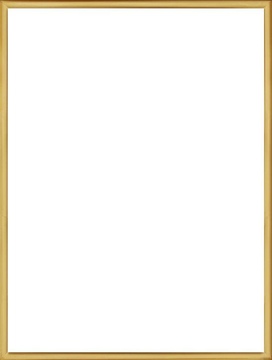 Homedecoration Almelo – Fotokader – Fotomaat – 42 x 50 cm – Vintage Goud