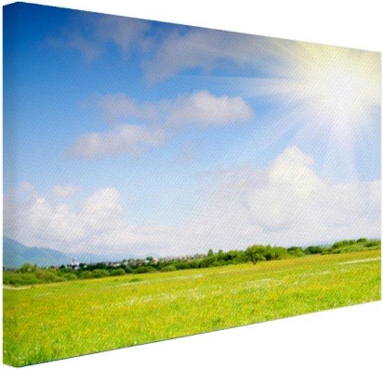 De weide in de zomer Canvas 80x60 cm - Foto print op Canvas schilderij (Wanddecoratie)