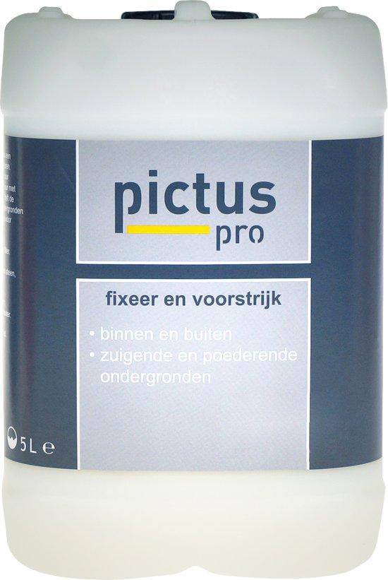 Pictus Pro Fixeer en Voorstrijk 5 ltr