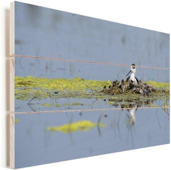 Steltkluut in een nestje Vurenhout met planken 120x80 cm - Foto print op Hout (Wanddecoratie)