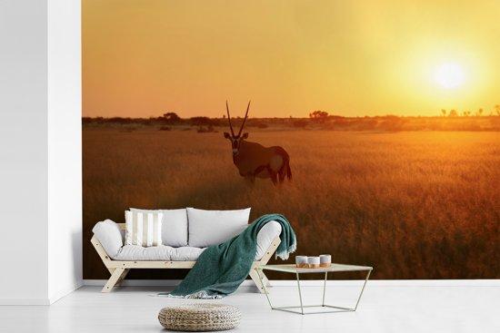 Fotobehang vinyl - Zonsondergang in het Centrale Kalahari-Spelreserve in Afrika breedte 390 cm x hoogte 260 cm - Foto print op behang (in 7 formaten beschikbaar)