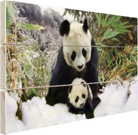 Moeder panda en welp in de winter Hout 30x20 cm - klein - Foto print op Hout (Wanddecoratie)