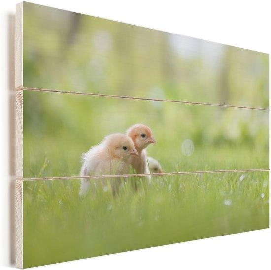Drie baby kuikentjes in het gras Vurenhout met planken 90x60 cm - Foto print op Hout (Wanddecoratie)