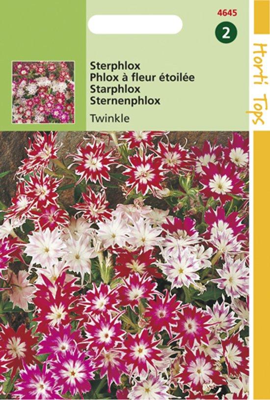 Hortitops Zaden - Phlox Cuspidata Compacta Twinkle Gem.