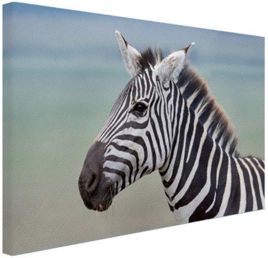 Bol zebra portret canvas 60x40 cm foto print op canvas zebra portret canvas 60x40 cm foto print op canvas schilderij wanddecoratie thecheapjerseys Gallery