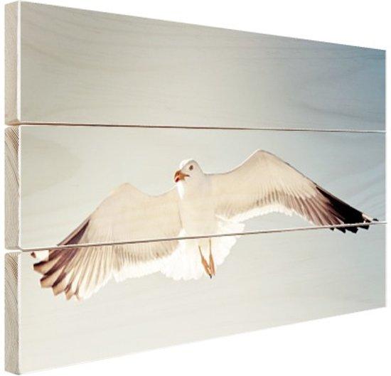 Zeemeeuw in vlucht Hout 60x40 cm - Foto print op Hout (Wanddecoratie)