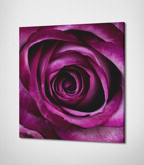 Purple Flower Canvas