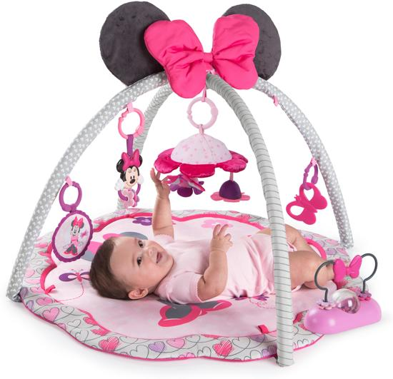 minnie mouse garden fun activity gym. Black Bedroom Furniture Sets. Home Design Ideas
