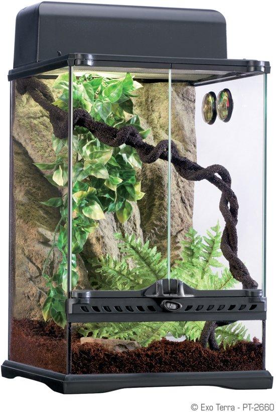 Exo Terra Terrarium Habitat Kit Rainforest - S - Zwart - 30 x 30 x 45 cm