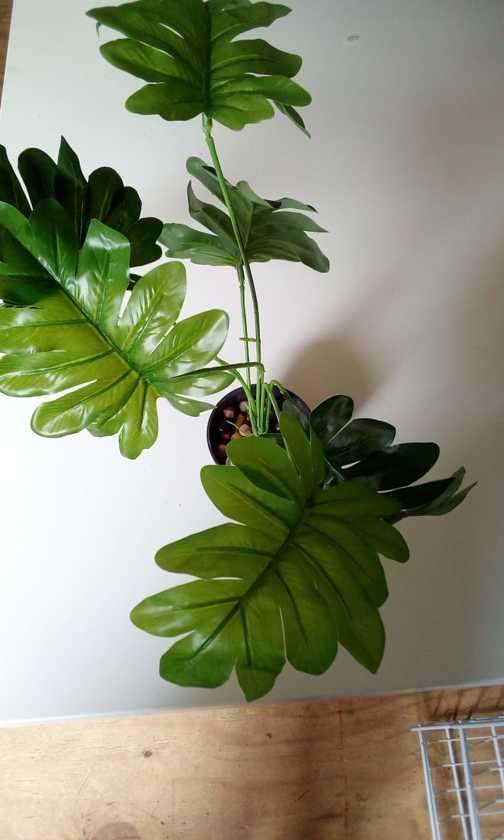 Kunstplanten - Groen - Divers