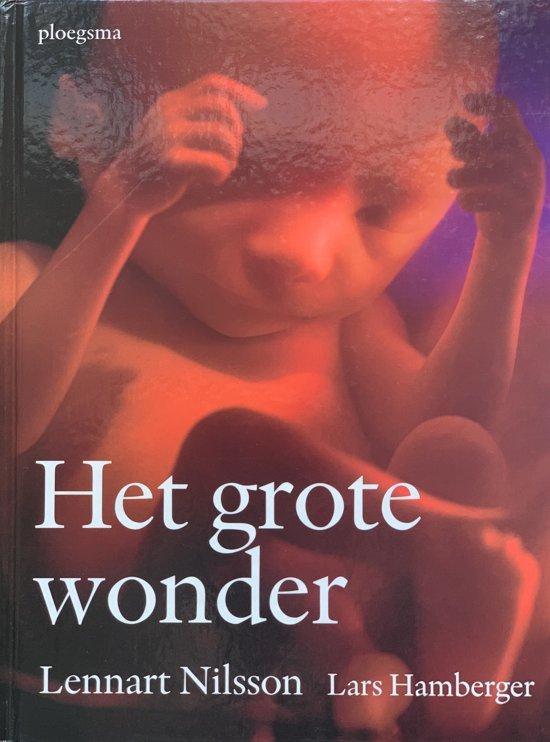 Leuke zwangerschapsboeken voor aanstaande ouders, er zijn er genoeg te vinden. En dat is maar goed ook, want wat is het fijn om zoveel mogelijk juiste informatie over zwanger zijn en bevallen te lezen, ter voorbereiding op het moederschap.