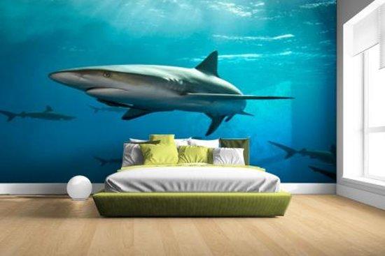 Groep haaien Fotobehang 380x265