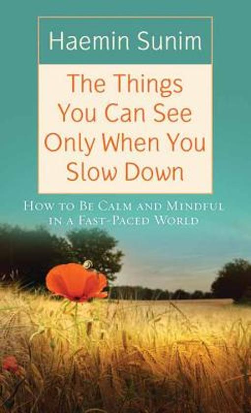 Boek cover The Things You Can See Only When You Slow Down van Hyemin (Onbekend)