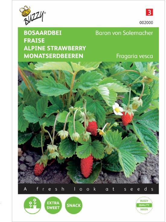 2 stuks Buzzy Aardbeien Baron Van Solemacher