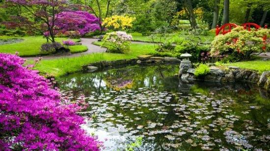 Tuin schilderij japanse tuin 6067307 70x130cm for Planten schilderij intratuin