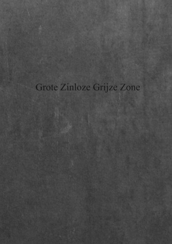 Grote zinloze grijze zone - Damien de Coene pdf epub