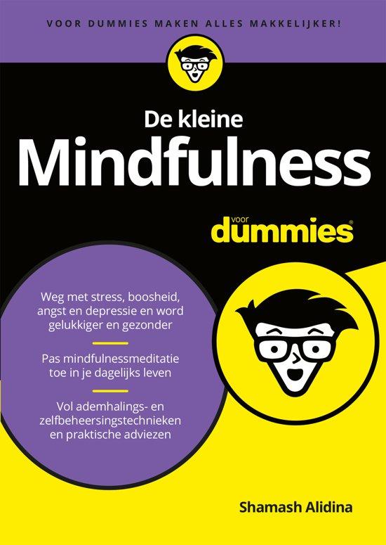 De kleine mindfulness voor dummies