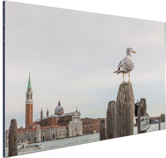Zeemeeuw in Venetie Aluminium 60x40 cm - Foto print op Aluminium (metaal wanddecoratie)