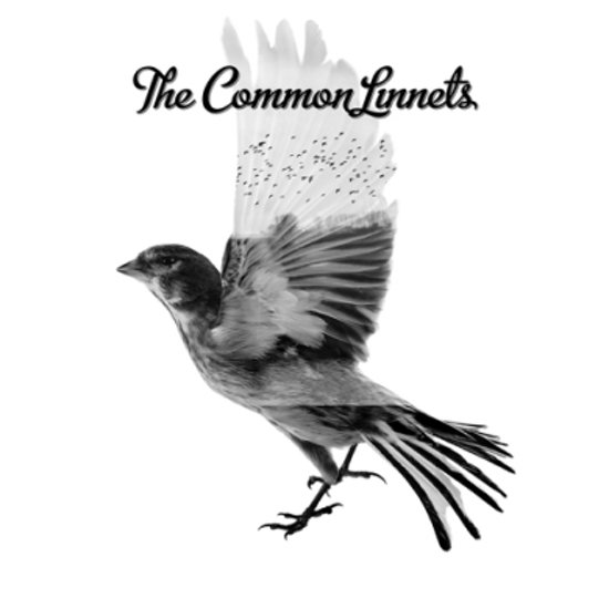 The Common Linnets (Deluxe Editie)