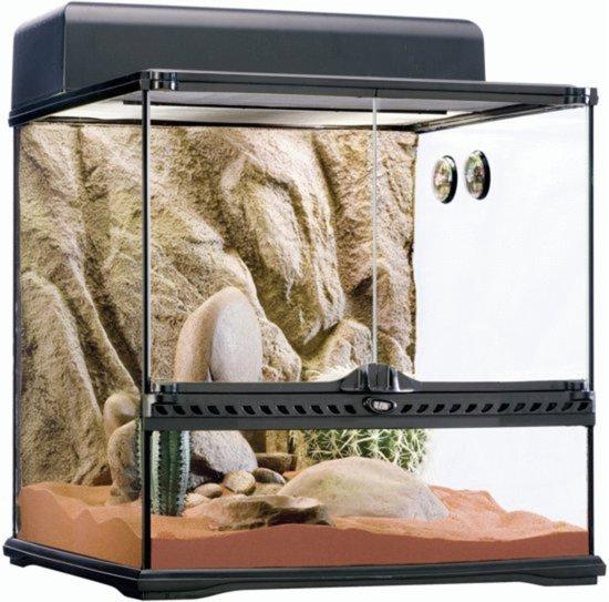 Exo Terra Terrarium Habitat Kit Desert - M - Zwart - 45 x 45 x 45 cm
