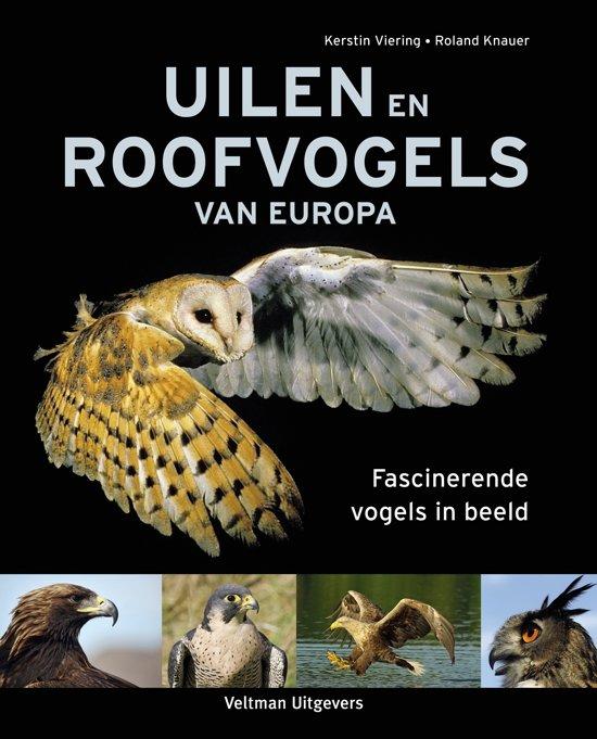 Uilen en roofvogels van Europa