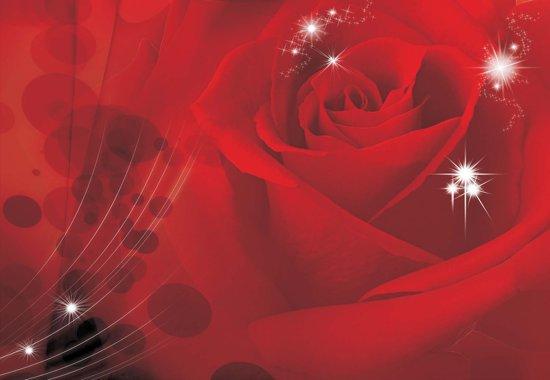 Fotobehang Flower Rose Red  | PANORAMIC - 250cm x 104cm | 130g/m2 Vlies