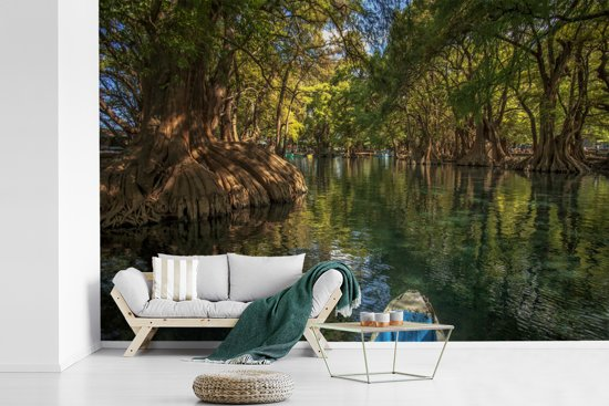 Fotobehang vinyl - De bomen van het Nationaal park Lago de Camécuaro die weerspiegelen in het water breedte 600 cm x hoogte 400 cm - Foto print op behang (in 7 formaten beschikbaar)