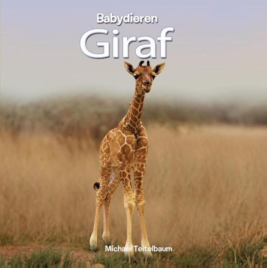 Babydieren Giraf