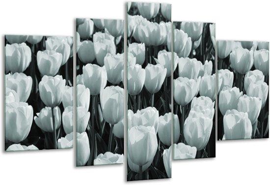 Glas schilderij Bloemen, Tulpen | Grijs, Groen | 170x100cm 5Luik | Foto print op Glas |  F006543