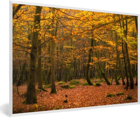 Foto in lijst - De dichte bossen van het Nationaal park New Forest in Engeland fotolijst wit 60x40 cm - Poster in lijst (Wanddecoratie woonkamer / slaapkamer)
