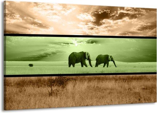 Canvas schilderij Olifant | Groen, Bruin | 140x90cm 1Luik