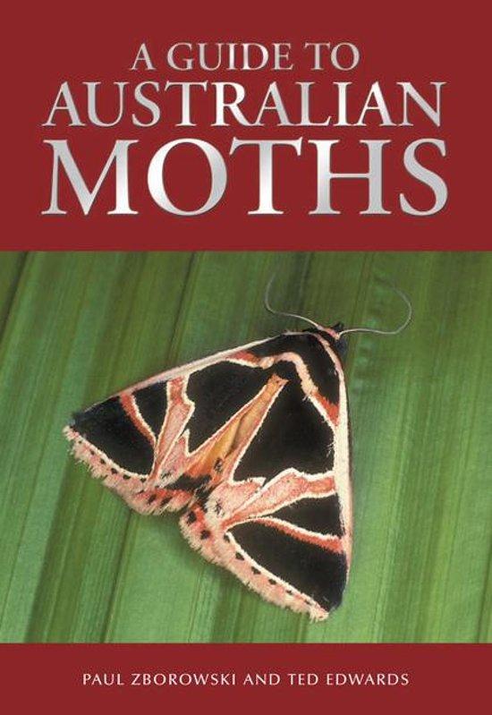 A Guide to Australian Moths