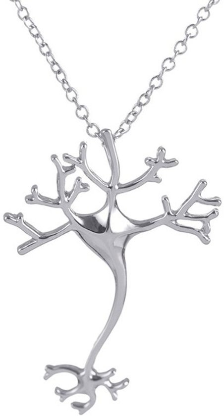 24/7 Jewelry Collection Neuron Ketting - Zenuwcel - Hersenen - Dokter - Zilverkleurig