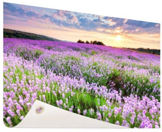 Paarse Decoratie Slaapkamer : Bol.com paarse bloemenzee tuinposter 200x100 cm foto op