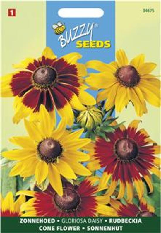 Buzzy Seeds - Rudbeckia Gloriosa Daisy mix