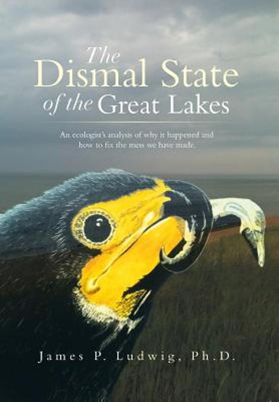 The Dismal State of the Great Lakes